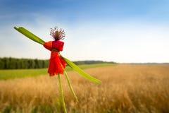 木偶由鸦片花制成 库存照片