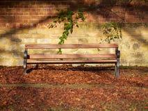 木公园长椅 库存图片