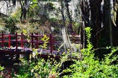 木兰庭院和种植园在查尔斯顿, SC 免版税图库摄影