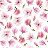 木兰开花水彩无缝的样式 拉长的花现有量 免版税图库摄影