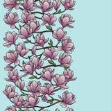 木兰春天无缝的边界 库存图片