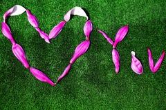 木兰瓣心脏标志没人 免版税图库摄影