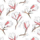 木兰花纹花样 重复与花的植物的纹理在白色背景的蓝色和粉红彩笔 拉长的现有量 库存照片