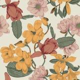 木兰 花 背景开花无缝的向量 bossies 春天 开花的结构树 菜样式 庭院 库存例证