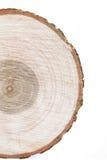 木切片样式 库存照片