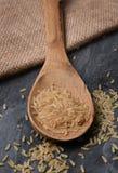 木匙子用糙米 免版税图库摄影