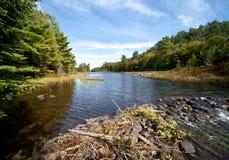 木匠清楚的湖远景水 免版税库存照片