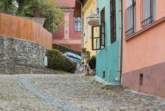 木匠街道在老城Sighisoara在木匠RomaniaStreet在老城Sighisoara在罗马尼亚 免版税库存照片