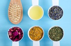 木发刷和塑料瓢有橄榄油,干燥万寿菊、淡紫色、荷兰芹和狗玫瑰色花的 芳香疗法,草本med 免版税库存照片
