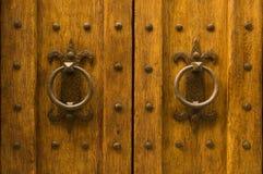 木古老详细资料的门 库存照片