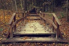 木台阶在秋天森林里 库存图片