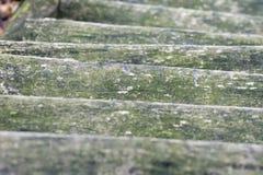 木台阶罗马尼亚秋天森林在一个雨天 免版税库存照片