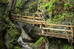 木台阶通过水在奥地利狼吞虎咽 图库摄影