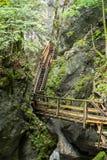 木台阶通过水在奥地利狼吞虎咽 库存照片