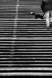 木台阶 免版税库存照片