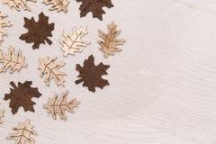 木叶子背景 图库摄影