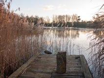 木吠声选址树桩在湖浮船的用茅草盖秋天 库存图片
