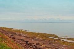 木在灯塔附近的海岛红色沙子海岸线 库存图片