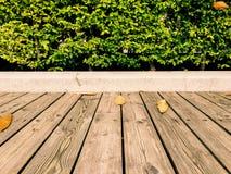 木地板和绿色事假灌木(背景) 库存图片