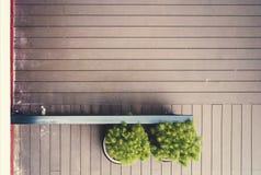 木地板有植物和篱芭背景,自由空间为增加文本空白的自然本底 库存图片