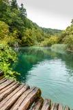 木地板,有透明绿松石的森林湖看法  免版税库存照片