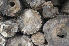 木垫 免版税图库摄影