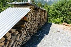 木堆在森林里 免版税库存照片
