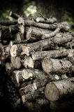 木堆特写镜头 免版税库存图片