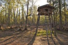木堡垒的结构树 免版税库存照片
