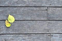 木头和叶子 免版税库存照片