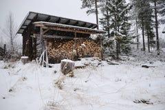 木头在冬天流洒了 库存图片