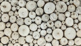 木头白色日志  库存例证