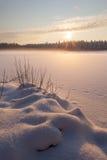 木头的冻结冬天湖在雪之下 免版税库存图片