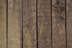 木头的接近的纹理 免版税库存照片