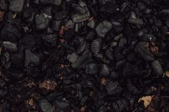 木头的绝种煤炭 库存图片