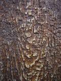 木头的褐色接近的纹理 与水下落的黑暗的木背景 免版税库存照片
