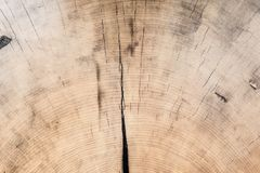 木头的褐色接近的纹理 抽象背景 库存图片