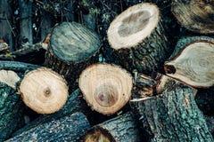 木头被锯入许多小片断 免版税库存图片