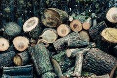木头被锯入许多小片断 库存图片