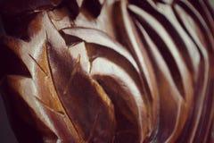 木头被雕刻的叶子细节  免版税库存照片