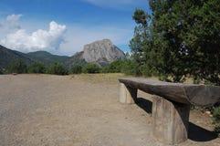 木头长凳在绿色树背景的  免版税库存照片