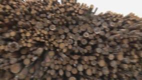 ?? 木存储仓 ?? 股票视频