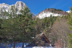 木客舱在多雪的森林里 库存照片