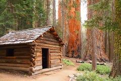木客舱在美国加州红杉森林里 免版税库存照片