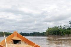 木小船前面和绿色密林风景,航行在Beni河的泥泞的水中,似亚马逊雨林,玻利维亚 免版税库存照片