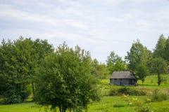 木屋在草甸 库存图片