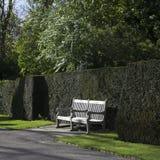 木庭院长凳在英国庭院里 库存图片