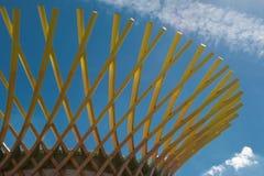 木弯曲的结构:与现代建筑Desi的大厦 库存图片