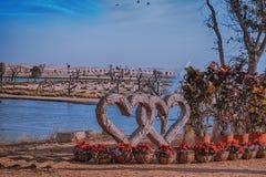 木心脏被卷入在迪拜Love湖 库存照片