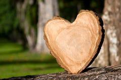 木心脏 免版税库存照片